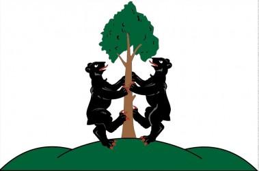 Návrh vlajky, obec Přimda