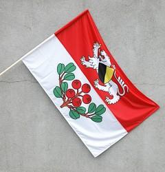 Vonkajšia vlajka obce Rynoltice