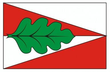 Návrh vlajky pre obec Panské Dubenky