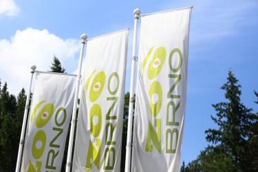 Vonkajšie tlačené vlajky pre Zoo Brno