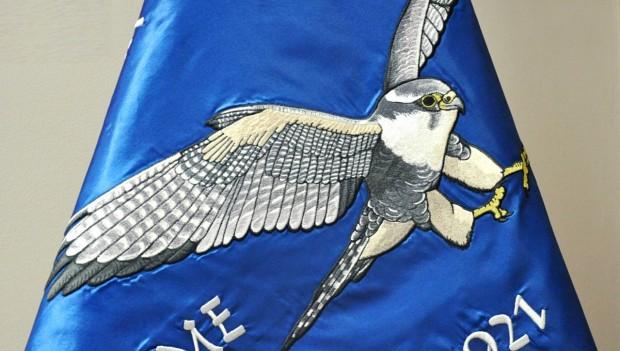 Sokolský prapor - symbol se silným významovým nábojem a poselstvím